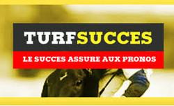 turf - turfs-succes